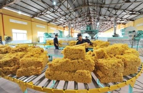 6 tháng đầu năm 2019, xuất khẩu cao su tăng cả lượng và trị giá