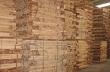 Dùng gỗ cao su sản xuất nhiên liệu