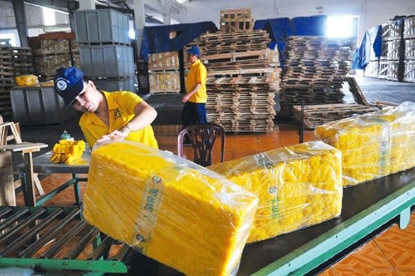 Xuất khẩu tăng vọt nhưng Việt Nam lại nhập siêu 100 triệu USD cao su trong nửa đầu năm