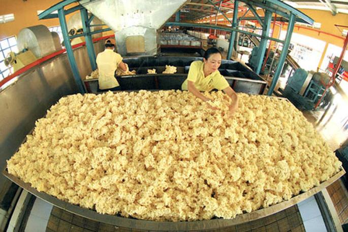 Việt Nam tăng nhập khẩu cao su thiên nhiên và cao su tổng hợp phục vụ cho xuất khẩu và chế biến sản phẩm