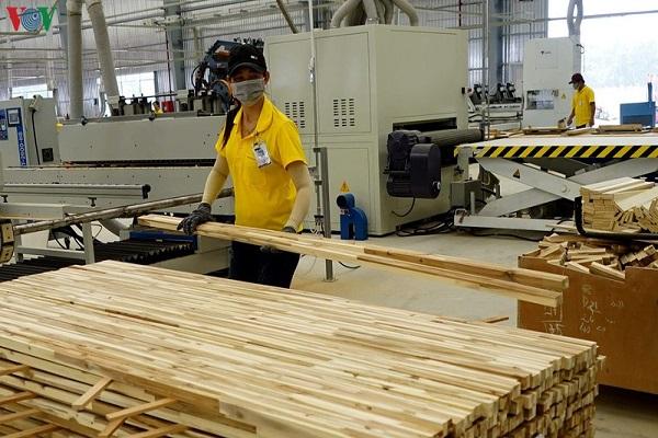 Giấy phép gỗ hợp pháp-hiện thực hóa con đường vào thị trường EU