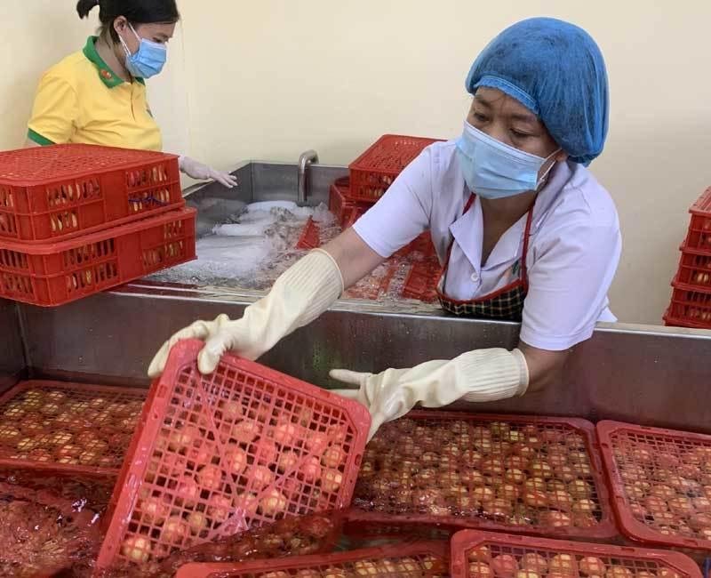 Bộ Công Thương đề nghị dành luồng ưu tiên cho nông sản khi chính vụ