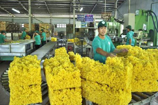Nâng cao chất lượng sản phẩm cao su, đáp ứng yêu cầu phát triển bền vững