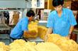 Thuế xuất khẩu mặt hàng cao su có thể giảm xuống 1%