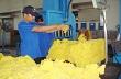 AgroMonitor: Giá cao su thành phẩm tại Đông Nam Bộ, Tây Nguyên sáng 10/7/2014