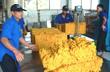 Tháng 1, xuất khẩu cao su giảm giá trị gần 33%