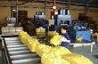 Giá cao su Thượng Hải tăng mạnh phiên thứ 2