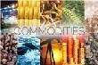 [Giá nông sản ngày 18/4] Giá cao su vẫn trên đà giảm sâu, cà phê chững giá