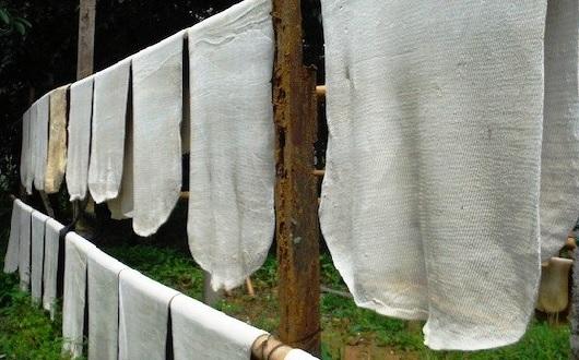 Chính phủ Ấn Độ nỗ lực điều tiết nhập khẩu cao su tự nhiên để hỗ trợ nông dân
