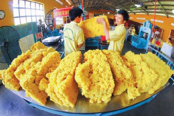 Thị trường hơn 1,1 triệu tấn cao su tại Chiết Giang hấp dẫn doanh nghiệp Việt