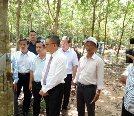 Đại sứ Việt Nam tại Campuchia thăm và làm việc với các công ty cao su tỉnh Kratie