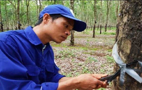 Nguyễn Văn Quý – Người thợ trẻ giỏi toàn quốc