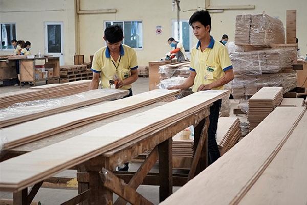 Mỹ tiến hành điều tra lẩn tránh thuế đối với gỗ dán Việt Nam?