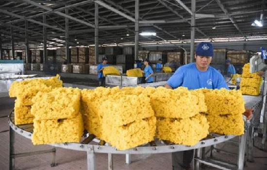 Giá trị xuất khẩu cao su 9 tháng giảm mạnh