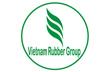 VRG  sẽ trồng cao su ở Quảng Bình