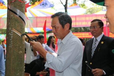 Cao su Phú Riềng quyết tâm vượt mức 25.000 tấn mủ