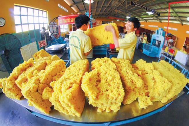 Giảm nhập khẩu từ Thái Lan, Malaysia, Trung Quốc tăng cường thu mua cao su Việt Nam