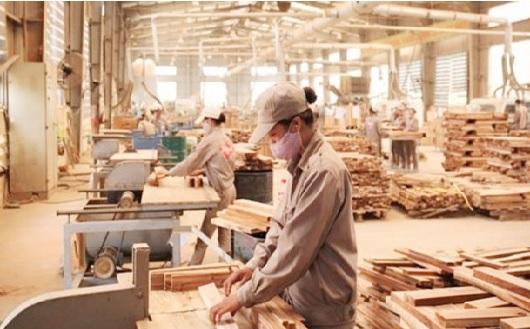 Xuất khẩu gỗ và sản phẩm từ gỗ đối mặt với quy định mới trong thanh tra hải quan